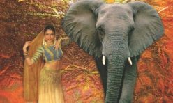 Плакат - Под слон